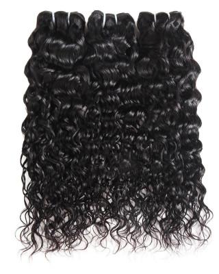 100% Virgin Malaysian Human Hair Water Wave Human Hair 3 Bundles
